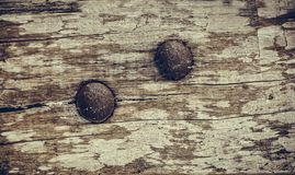 Closeup of old grunge wood with rusty screw background Royalty Free Stock Image