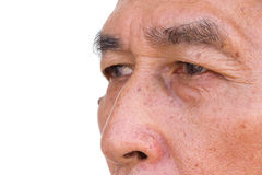 Closeup old man face with white background. Royalty Free Stock Images