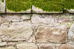 Closeup old medieval mossy wall Stock Photos
