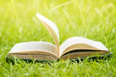 Old Open Book On Grass Royalty Free Stock Photo