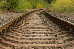Old railway in a forest Royalty Free Stock Photos