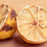 Closeup old rotten lemon Stock Image