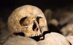 Closeup of an old skull in the catacombs in Paris. Closeup of an old skull in the famous catacombs of Paris, France Royalty Free Stock Photography