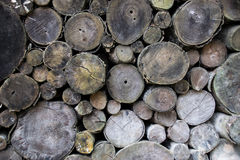 Closeup old timber. Stacked timber logs all over for industry abstract background Stock Photo