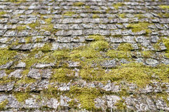 Closeup on old and weathered wooden roof shingle. Covered by moss Royalty Free Stock Photos