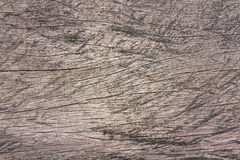 Closeup old wood texture background Royalty Free Stock Images