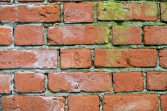 Closeup older bricks Royalty Free Stock Photo