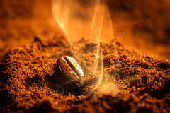 Closeup one burned coffee beans Royalty Free Stock Photo