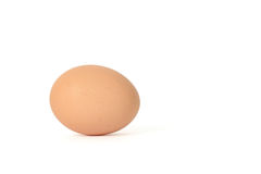 Closeup of one egg Stock Image