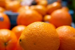 Closeup of orange in front of blurry oranges royalty free stock image