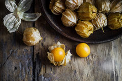 Closeup orange organic cape gooseberries Stock Photo