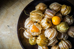 Closeup orange organic cape gooseberries Stock Images