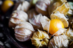 Closeup orange organic cape gooseberries Royalty Free Stock Photos