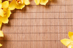 Closeup of orchid flowers on bamboo mat Royalty Free Stock Photography