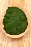 Closeup  organic spirulina algae Stock Photos