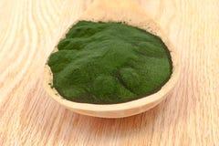 Closeup  organic spirulina algae Stock Photography