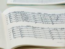 Closeup på en musicbook med notes.JH Royaltyfria Foton