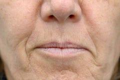 Closeup på munnen av en kvinna royaltyfria foton