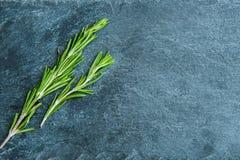 Closeup på rosmarinus på stensubstraten Fotografering för Bildbyråer