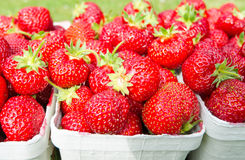 Closeup for packages with fresh strawberries Royalty Free Stock Images