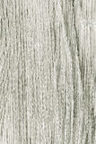 Closeup of paint wood. Gray wooden plank as background texture. Royalty Free Stock Photography