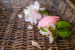 Closeup of painted chicken egg in basket Royalty Free Stock Images