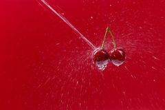 Closeup of a pair of cherries with stem, splashing with a spurt of water over red background. stock images