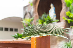 Closeup of palm leaf on pews with de-focused grotto Royalty Free Stock Photo