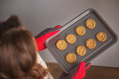Closeup on pan with christmas cookies in hand of young housewife Stock Image