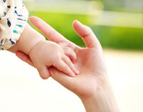 Closeup parent and baby holding hand together Royalty Free Stock Images