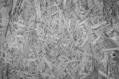 Closeup of a particle board Royalty Free Stock Photo