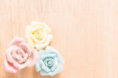 Closeup Pastel Rose on wooden background Stock Images
