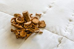 Closeup pattern background of many different wine corks, wine co royalty free stock photo