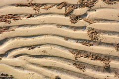 A closeup of patterns in the sand Royalty Free Stock Image