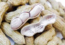 Closeup peanut boiled Royalty Free Stock Images