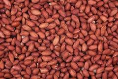 Closeup on peanuts Royalty Free Stock Photography