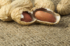 Closeup Peanuts on burlap Stock Images