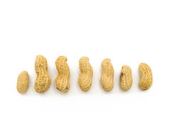 Closeup of Peanuts. On white background Stock Images