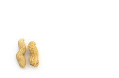 Closeup of Peanuts. On white background Stock Image