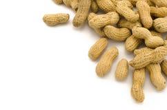 Closeup of Peanuts Royalty Free Stock Image