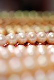 Closeup of a  pearl strand Stock Image