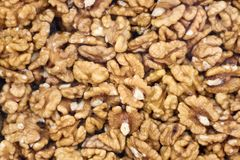 Closeup of Peeled Walnuts Pile. Walnuts Background. Many Different Textured Walnuts. royalty free stock photo