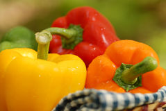 Closeup of peppers Stock Image