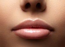 Closeup perfect natural lip makeup. Beautiful plump full lips on female face. Clean skin, fresh make-up. Spa tender lips Royalty Free Stock Photo