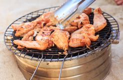 Person Prepares Chicken Wings on Barbecue Grating on Beach Stock Images