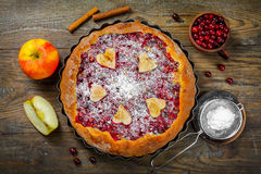 Closeup photo of apple and Cranberry pie Royalty Free Stock Images