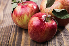 Closeup photo of apples royalty free stock images