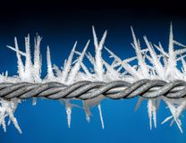 Closeup Photo of Barbwire With Icicles Royalty Free Stock Image