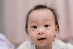 Closeup photo of beautiful cute asian baby Stock Images