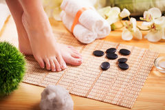 Closeup photo of a beautiful female feet with french pedicure Stock Photography